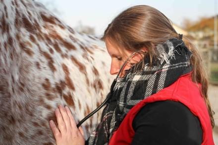 Tierärztin Claudia Rutz